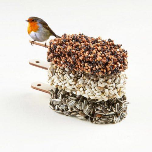 desserts-for-birds_dejavu